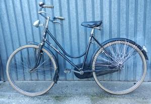 Bicicletta da donna Torpado